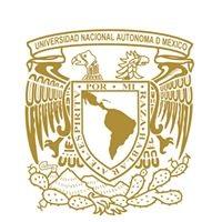 UNAM-San Antonio