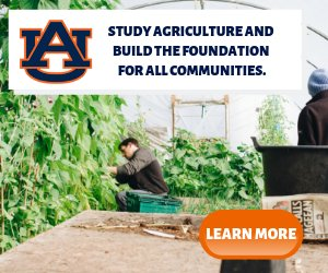 Study Agriculture in the US